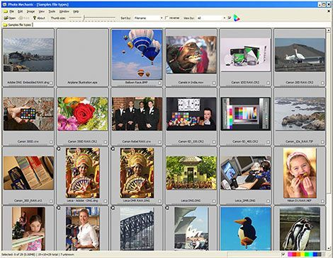 Photo Mechanic is an example of a fast Image Browser