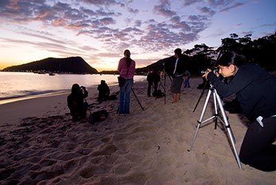 sydney photo workshops